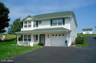 812 Burgess Court, Woodstock, VA 22664 (#SH9693205) :: Pearson Smith Realty