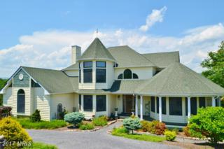357 Sandy Hook Road, Strasburg, VA 22657 (#SH9729807) :: Pearson Smith Realty