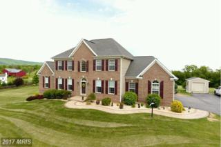 97 Junction Overlook, Strasburg, VA 22657 (#SH9906099) :: Pearson Smith Realty