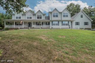 25390 Mount Sterling Court, Mechanicsville, MD 20659 (#SM9736464) :: Pearson Smith Realty