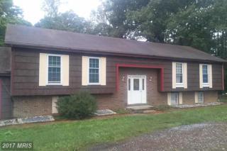 29763 Birch Circle, Mechanicsville, MD 20659 (#SM9778618) :: Pearson Smith Realty