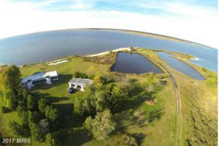 9050 Fishing Island Road, Princess Anne, MD 21853 (#SO9531531) :: LoCoMusings