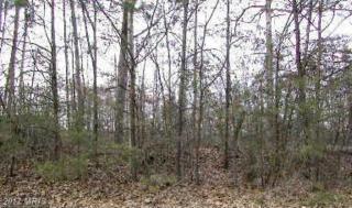 5300 Ridge Road, Spotsylvania, VA 22551 (#SP8681804) :: LoCoMusings