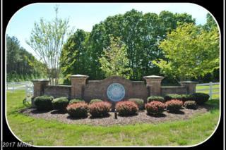 9005 Pine Acres Way, Spotsylvania, VA 22551 (#SP9664712) :: LoCoMusings