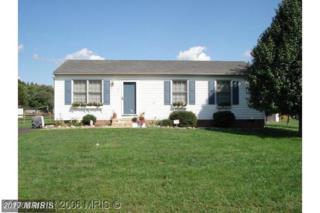 11811 Cherrywood Drive, Locust Grove, VA 22508 (#SP9754517) :: Pearson Smith Realty