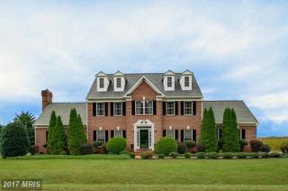 13204 Fox Gate Drive, Spotsylvania, VA 22553 (#SP9777096) :: Pearson Smith Realty