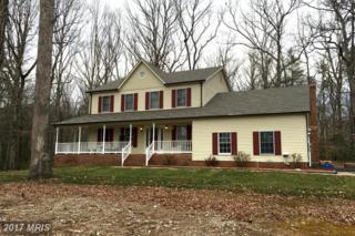116 Delmar Court, Fredericksburg, VA 22407 (#SP9808394) :: Pearson Smith Realty