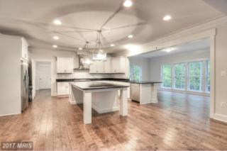 Indian Point Road, Stafford, VA 22554 (#ST9702087) :: Pearson Smith Realty