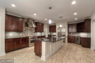 Indian Point Road, Stafford, VA 22554 (#ST9702132) :: Pearson Smith Realty