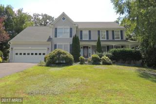 52 Cardinal Forest Drive, Fredericksburg, VA 22406 (#ST9728242) :: Pearson Smith Realty