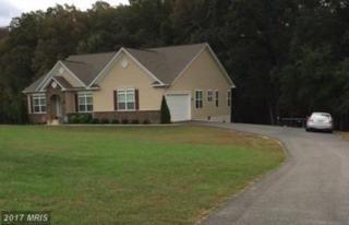 220 Poplar Road, Fredericksburg, VA 22406 (#ST9794299) :: Pearson Smith Realty