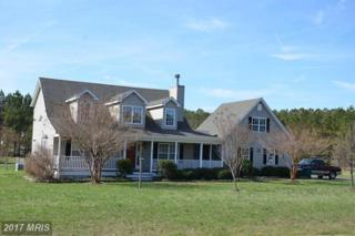21845 Albie Road, Sherwood, MD 21665 (#TA9656043) :: Pearson Smith Realty