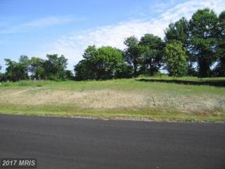 16722 Custer Court, Williamsport, MD 21795 (#WA8593463) :: Pearson Smith Realty