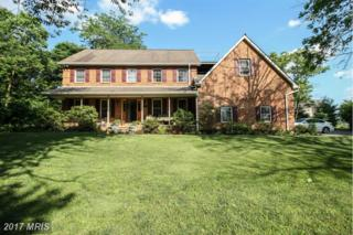9647 Beaver Creek Church Road, Hagerstown, MD 21740 (#WA9699766) :: Pearson Smith Realty