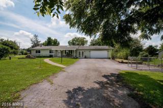 21283 Mt Lena Road, Boonsboro, MD 21713 (#WA9744958) :: Pearson Smith Realty