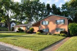910 Isaac Street, Winchester, VA 22601 (#WI9757855) :: Pearson Smith Realty