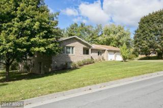315 Wood Avenue, Winchester, VA 22601 (#WI9793714) :: Pearson Smith Realty