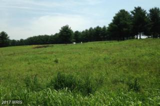 LOT 8 Bowling View Road, Front Royal, VA 22630 (#WR8661589) :: Pearson Smith Realty