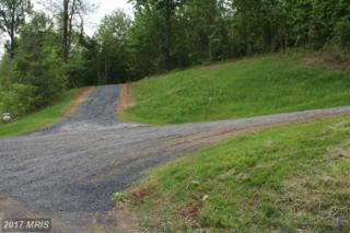 Buck Mountain Road, Bentonville, VA 22610 (#WR9664815) :: LoCoMusings