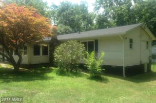 59 Byers Lane, Front Royal, VA 22630 (#WR9714362) :: Pearson Smith Realty