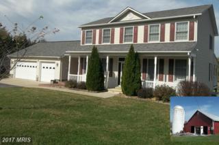 4403 Howellsville Road, Front Royal, VA 22630 (#WR9898518) :: LoCoMusings