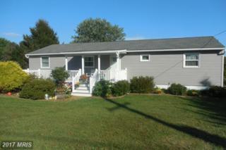 561 River Road, Delta, PA 17314 (#YK9753748) :: LoCoMusings