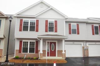 169 Sunrise Circle, Cumberland, MD 21502 (#AL9775111) :: Pearson Smith Realty