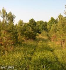 Bowles Creek-State Route 620- Road, Appomattox, VA 24522 (#AV9516532) :: LoCoMusings