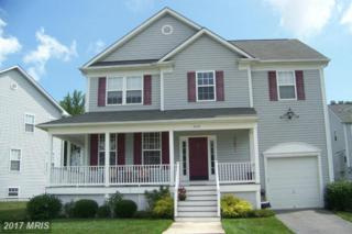 1610 Sandy Hollow Circle, Baltimore, MD 21221 (#BC9710397) :: Pearson Smith Realty