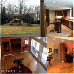 1500 Near Thicket Lane, Stevenson, MD 21153 (#BC9772348) :: Pearson Smith Realty