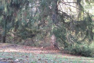 6111 Hutschenreuter Road, Glen Arm, MD 21057 (#BC9799056) :: Pearson Smith Realty