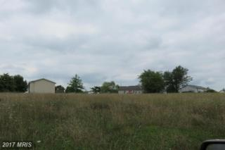 0 Grubb Landing, Inwood, WV 25428 (#BE9010206) :: Pearson Smith Realty