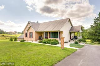 906 Conner Bowers Road, Hedgesville, WV 25427 (#BE9720228) :: Pearson Smith Realty