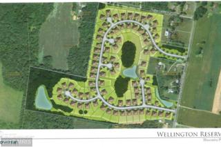 Welltown School Road, Martinsburg, WV 25403 (#BE9723485) :: Pearson Smith Realty