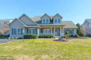 9420 River View Road, Broomes Island, MD 20615 (#CA9551683) :: Pearson Smith Realty