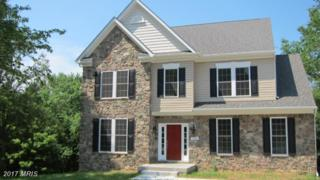 2 Mcglothlin Road, Conowingo, MD 21918 (#CC7929278) :: Pearson Smith Realty
