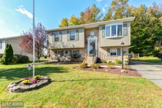 7 Burrwood Court, North East, MD 21901 (#CC9787078) :: Pearson Smith Realty