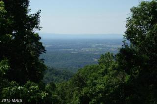 531 Barker, Bluemont, VA 20135 (#CL8379149) :: Pearson Smith Realty