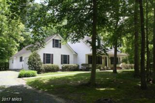 24766 Woods Drive, Denton, MD 21629 (#CM9667468) :: LoCoMusings