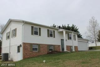 1703 Valley Drive, Westminster, MD 21157 (#CR9546688) :: LoCoMusings