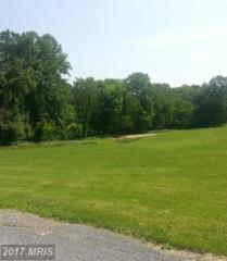 LOT 2 Oakland Mills Road, Sykesville, MD 21784 (#CR9671996) :: LoCoMusings