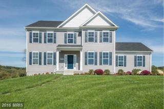 201 Rochester, Westminster, MD 21157 (#CR9795995) :: Pearson Smith Realty