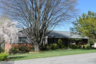 1134 Oaklawn Drive, Culpeper, VA 22701 (#CU9698146) :: LoCoMusings