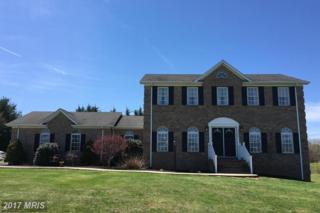 19348 Clair Manor Drive, Culpeper, VA 22701 (#CU9798371) :: Pearson Smith Realty