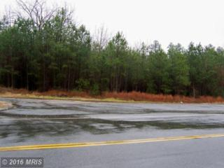0 Nelson Hill Road, Milford, VA 22514 (#CV7988881) :: Pearson Smith Realty