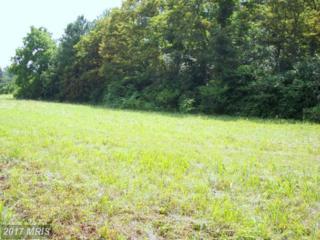 0 Perimeter Road, Milford, VA 22514 (#CV9523688) :: LoCoMusings