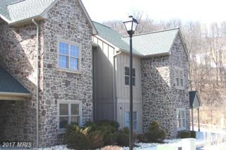 14092 Blairs Ridge Dr #2, Mercersburg, PA 17236 (#FL7840514) :: Pearson Smith Realty