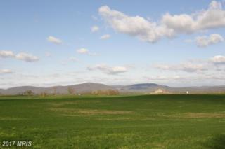 Cool Hollow Road, Greencastle, PA 17225 (#FL8538199) :: Pearson Smith Realty