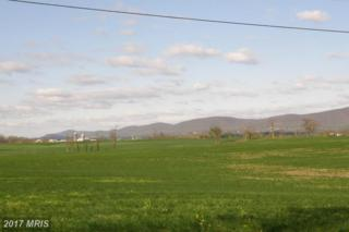 Cool Hollow Road, Greencastle, PA 17225 (#FL8538477) :: Pearson Smith Realty