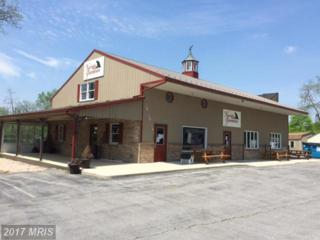 15021 Molly Pitcher Highway, Greencastle, PA 17225 (#FL8608949) :: Pearson Smith Realty
